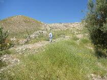 Tel Dothan 02