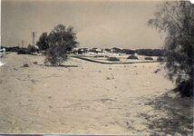 Sand a Sinai 2