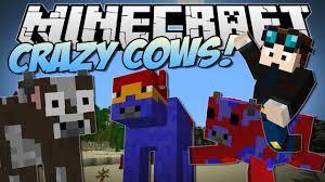File:Crazy Cows.jpg