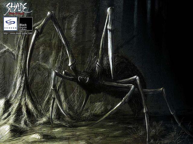 File:Wood Spider.jpg