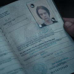 Boris Niewald's passport