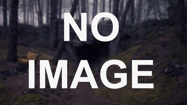 File:Portal – No Image.jpg