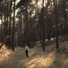 Unfamiliar woods