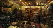 Boy cellar