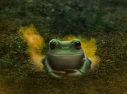 James frog