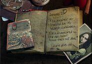 Raphael diary