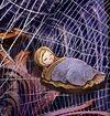Rapunzelpiece4
