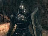 Caballero de Berenike