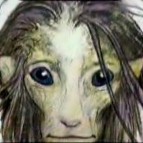 Concept sketch by Brian Froud
