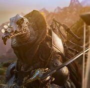 SkekOk in armor
