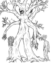 Ent and dryads
