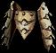 Bone Girdle Human