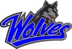 DF Wolves Logo