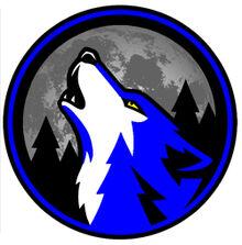DFHS School Logo