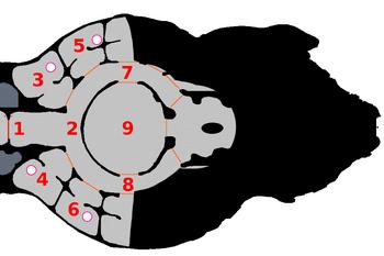 Deckplan-Scan-03a