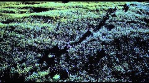 Velociraptors Long Grass