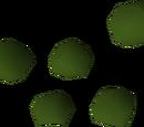 Irit seed