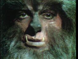 Werewolf640