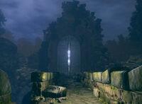 Darkroot garden door