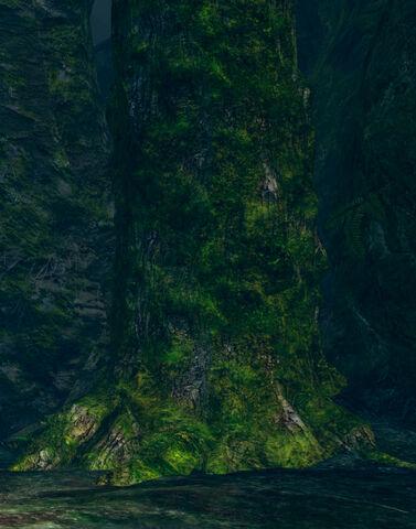 File:Possessed tree.jpg