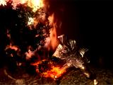 Black Flame (Dark Souls)