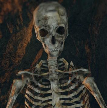 File:Skeleton - 01.jpg