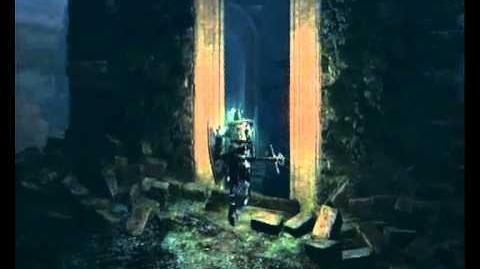 Dark Souls - Enchanted Ember location in Darkroot Garden