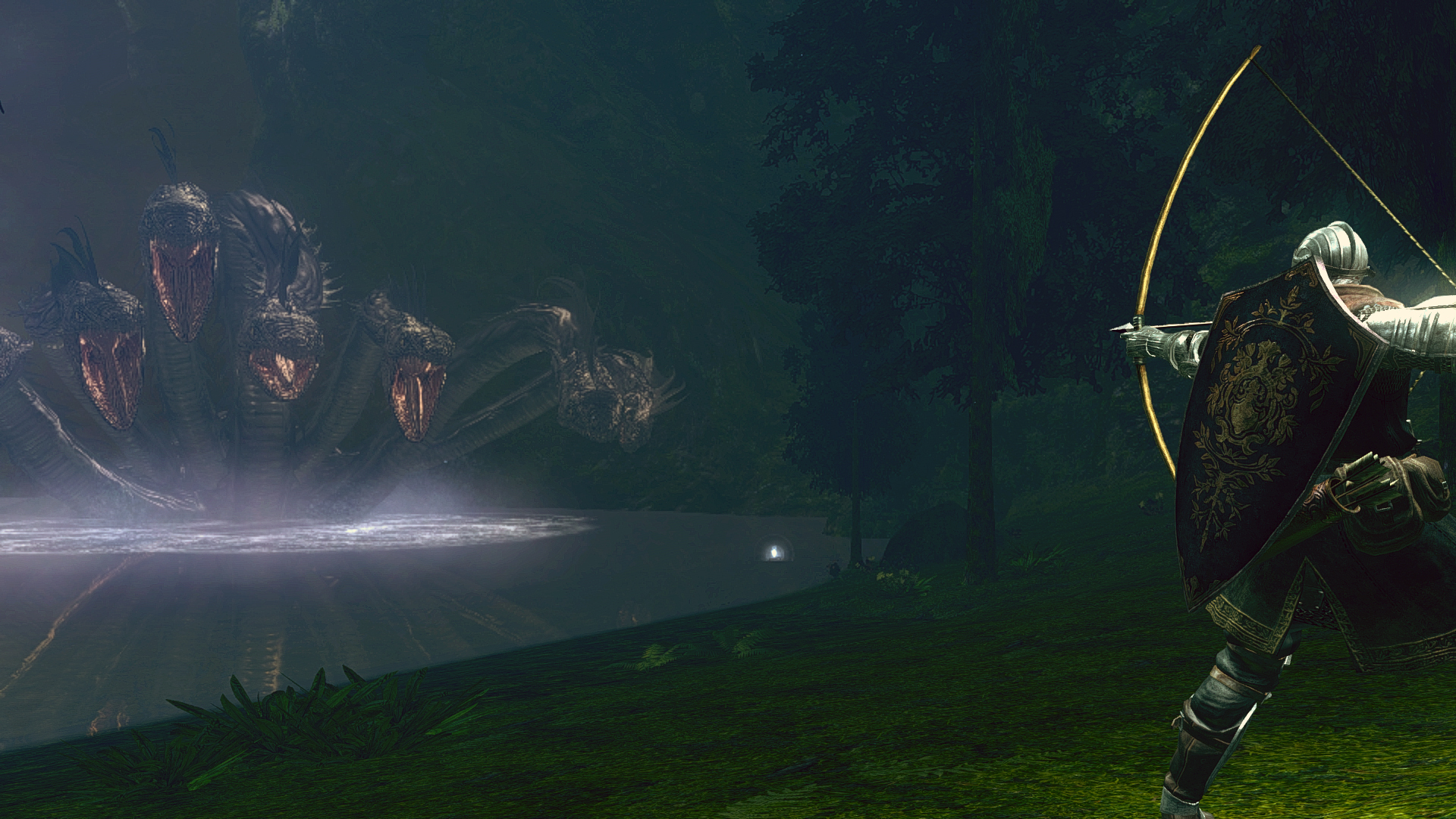 Darkroot Basin Dark Souls Wiki Fandom Powered By Wikia