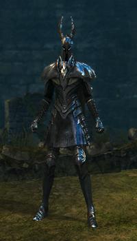 Silver knight set female