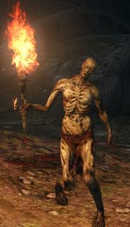 Torch Undead