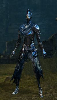 Artorias Set Female