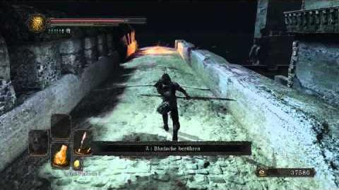 Dark Souls 2 Drachenzahn finden