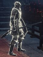 Anri as a phantom
