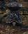 Poisonhorn Bug