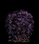 Item Purple Moss Clump