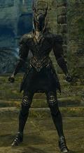Сет Черного Рыцаря