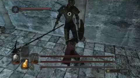 Dark Souls 2 Стражи Руин PC-0