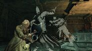 Sanctum knight