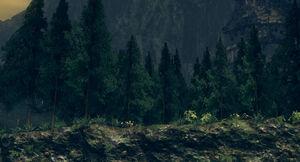 Royal wood01