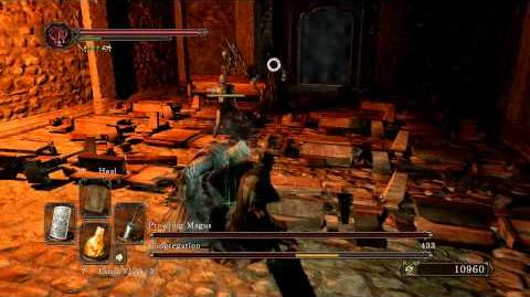 Dark Souls 2 - Prowling Magus and Congregation (Melee) Shield