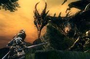 Chosen undead fighting