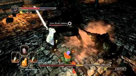 Dark Souls 2 - Velstadt, The Royal Aegis (Melee) with Grave Warden Agdayne-0