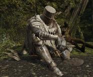 Heide Knight (Forest of Fallen Giants)
