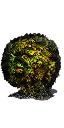 Poison Moss