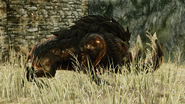 Giant Undead Boar02