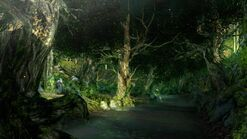 Dark souls 2 forest