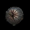 Пронзающий щит (Dark Souls III)
