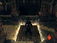 Hosting trap door