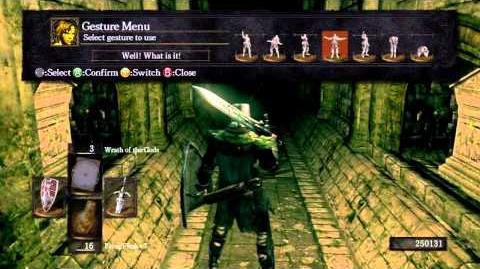 Dark Souls - Paladin Leeroy's Hidden Sign