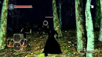 Dark Souls 2- Dual Swordsman Gameplay